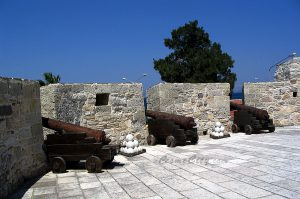 cesme-kale-top-gulleri-ic-cekim-photo-1